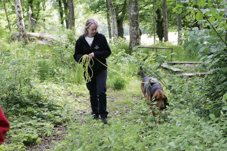 Tine Högmark från Kilanda brinner för att jobba med hundar.