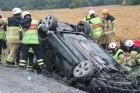 Bilen drog med sig ett viltstängsel på en sträcka av 25 meter.