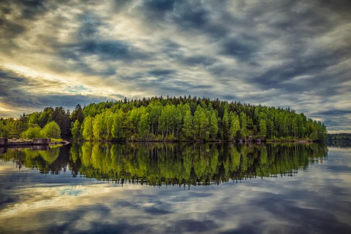 Piotr Korytowski från Lilla Edet har tagit sig till final i Sveriges bästa trädbild. Bilden är tagen vid Ryrsjön i Göta. Foto: Piotr Korytowski