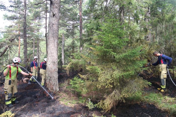 Räddningstjänsten har fått släcka skogsbranden i Iglekärr vid två tillfällen under knappt 24 timmar. Foto: Christer Grändevik