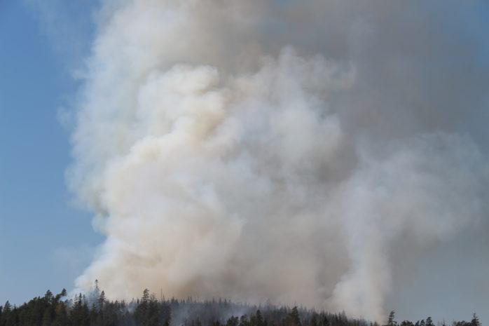 Omfattande skogsbrand i Hjärtum. Foto: Christer Grändevik.