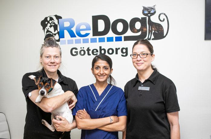 ReDog Göteborg i samarbete med Norra Djurakuten ger djurägare i Ale en unik möjlighet till en bättre djurhälsa. Från vänster Beatha Kjessler Mattsson, hundfysioterapeut, Laxmi B. Melwani, veterinär, Jenny Bertilsson, hundfysioterapeut.