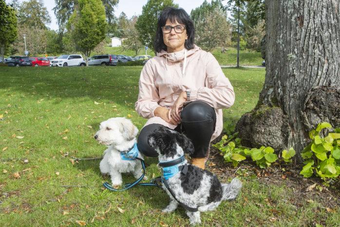 Elisabeth Karlsson och hennes hundar, Isa och Leija ska hjälpa elever att komma till skolan.