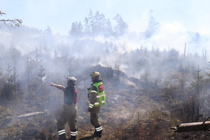 Det brinner just nu i skogsområdet Risveden. Foto: Christer Grändevik.
