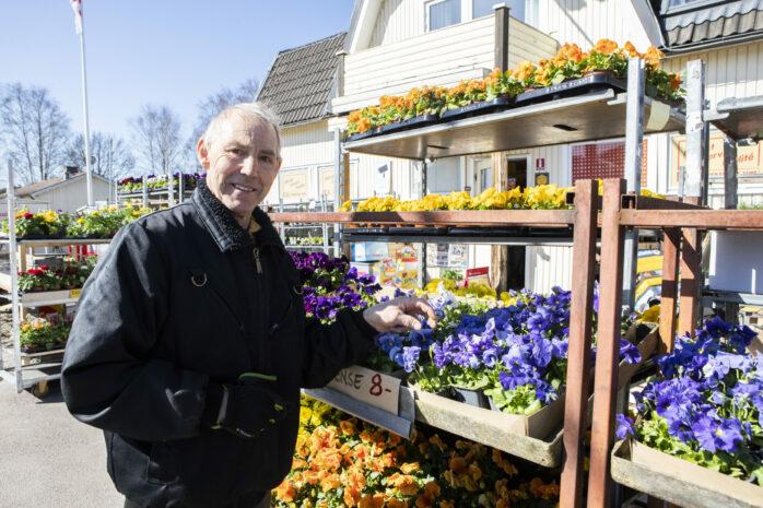 Efterfrågan på växter och plantor är stor. Benny Mortensen på Svenssons Livs har fullt upp så här års.