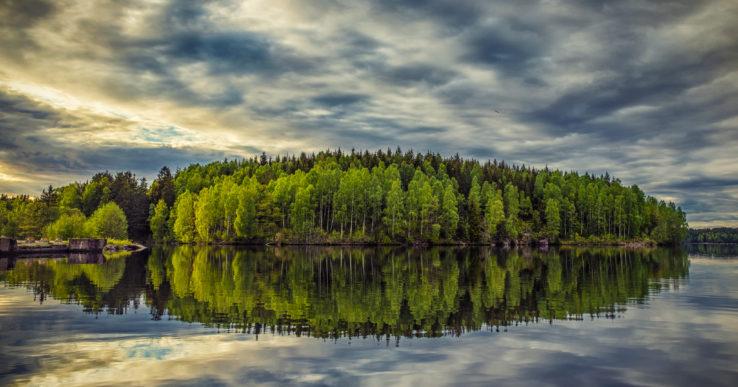 """Ska Piotr bli """"Årets trädfotograf""""?"""