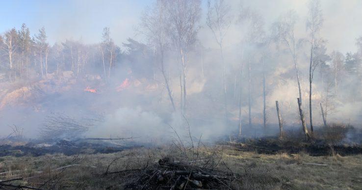 Avråder från att elda utomhus